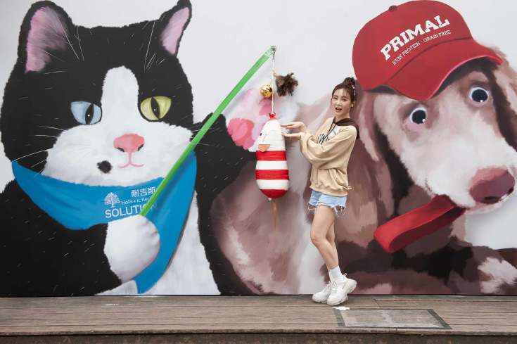 【新聞照三】Nikita舒子晨被貓逗! 吸睛度破表.jpg
